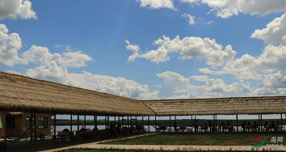 齐齐哈尔龙安桥湿地公园风光
