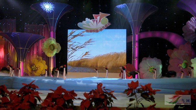 盘锦市小学生化装的鸟类《鹤舞》-文化舞蹈盒表演小学生图片
