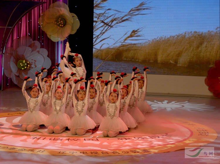 盘锦市小学生表演的文化《鹤舞》-舞蹈小学实验顺德鸟类一中图片